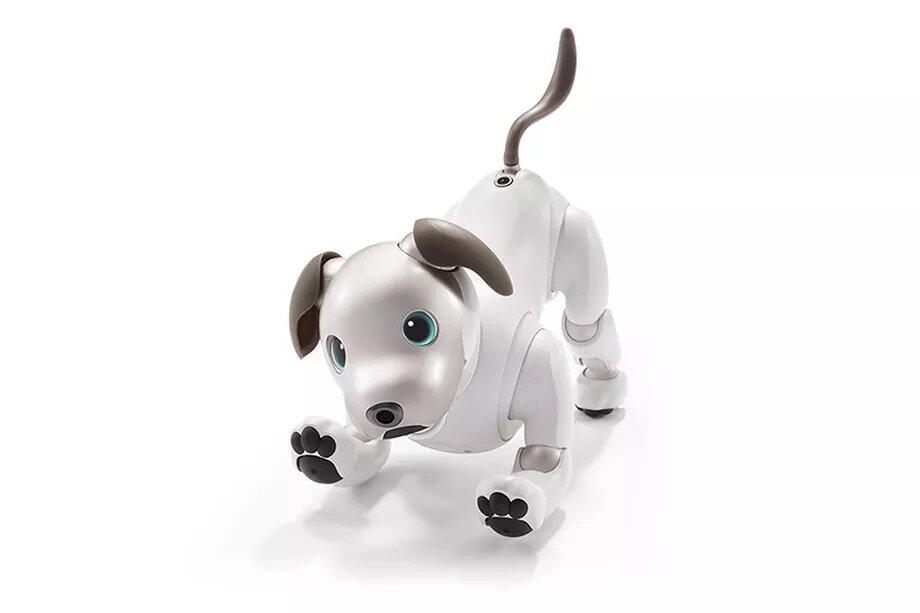 Me API të reja, qeni robot i Sony